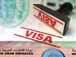 Visa Pro Services